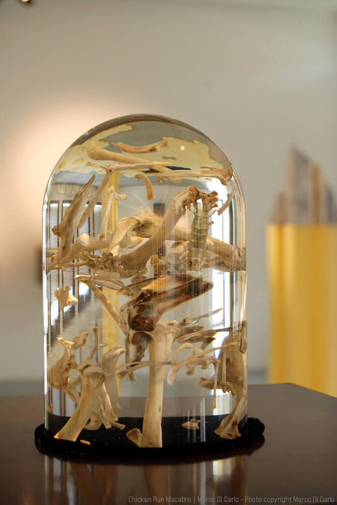 Marco Di Carlo - Sculpture Chicken Run Macabre - Art Contest - Photo copyright © Marco Di Carlo