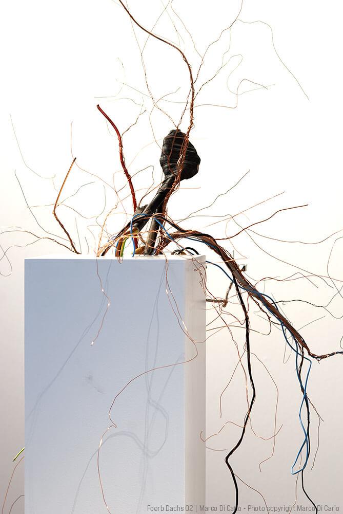 Marco Di Carlo - Sculpture - Foerb Dachs 02 - Photo copyright © Marco Di Carlo